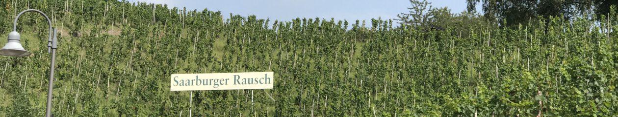 blog.duesseldorf.koeln
