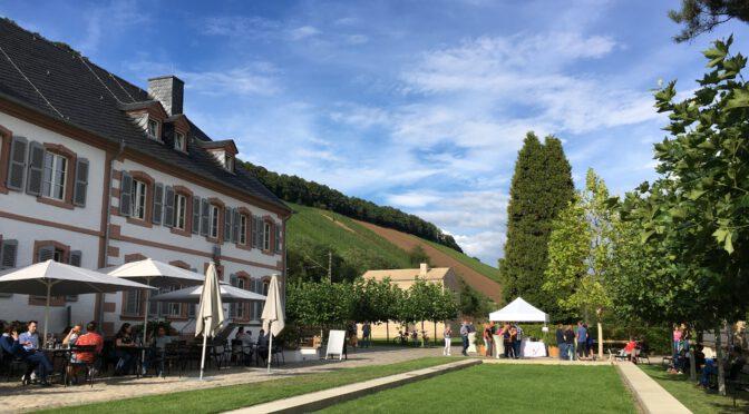 Saar-Riesling-Sommer 2020 abgesagt, auf zum Alternativprogramm…